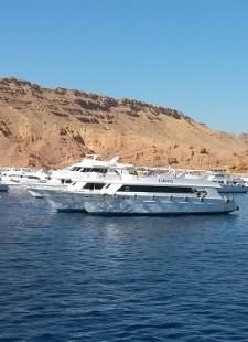Staff trip to… Sharm El Sheikh