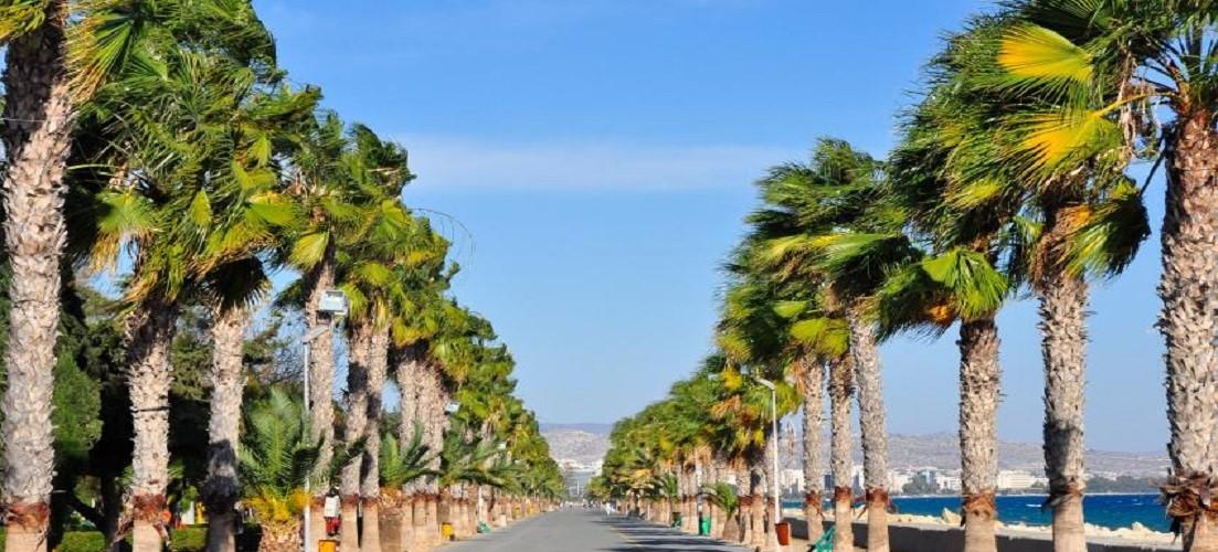 Экскурсии из лимассола кипр цены