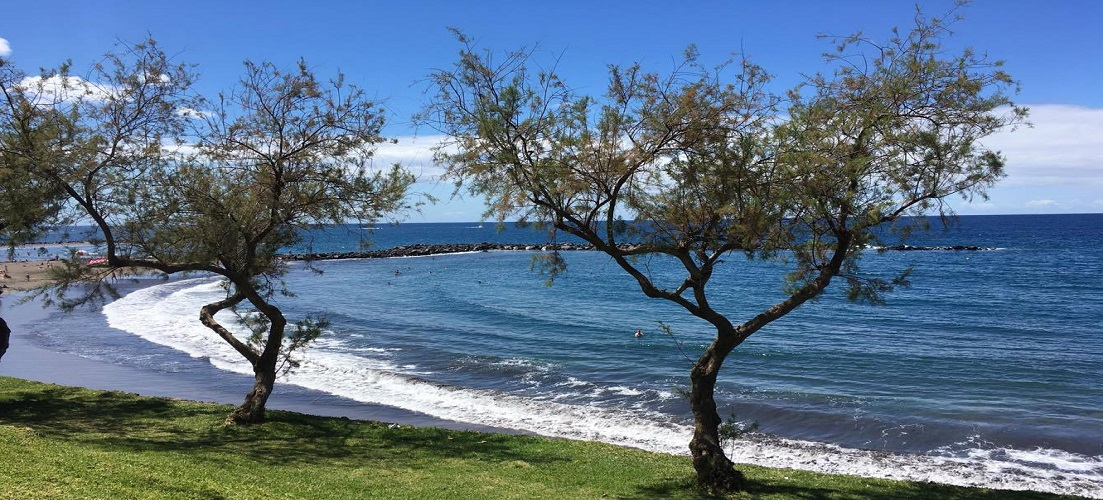 A week at the Iberostar Las Dalias