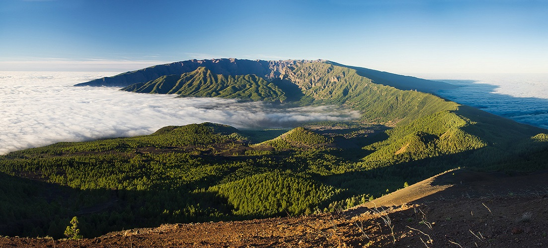 Which Canary Island is right for you