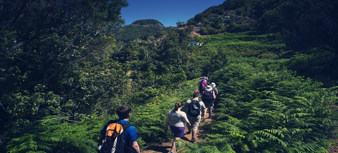 Active holidays in Tenerife - hiking