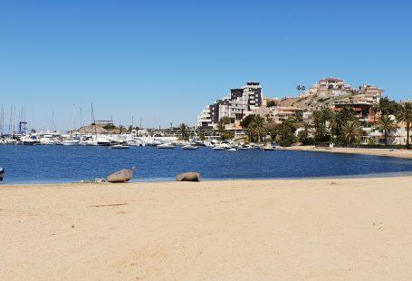 72 hours in Murcia